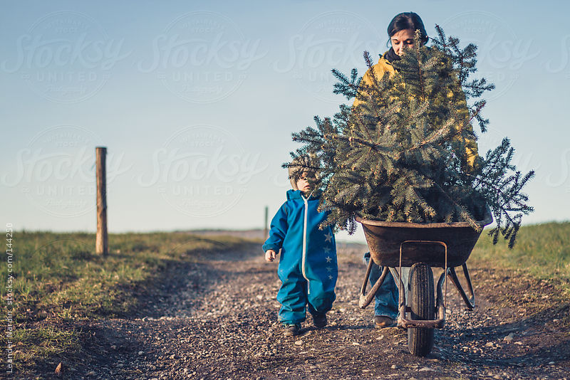 Mother and son moving a wheel barrow with a christmas tree in it by Leander Nardin