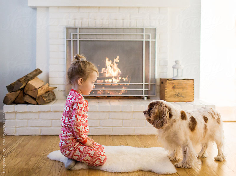 little girl in holiday pajamas sits in front of the fire with her dog by Meaghan Curry