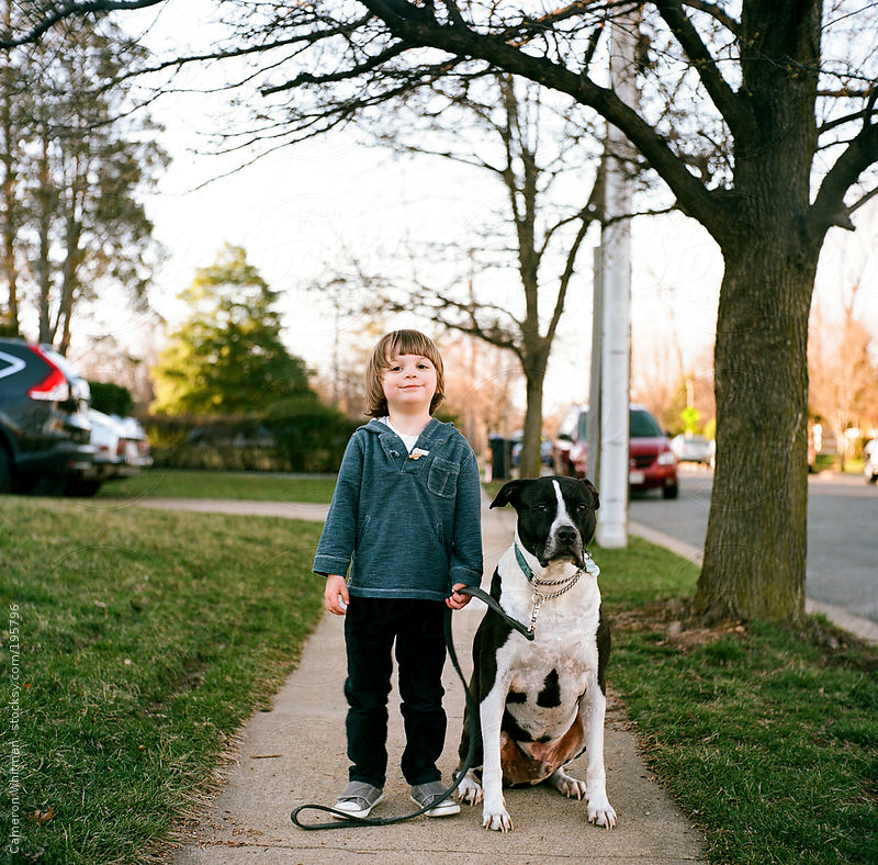 Boy and his dog portraits by Cameron Whitman