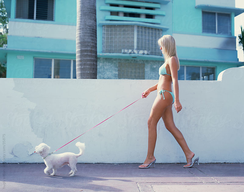 Woman wearing bikini, walking with her pet dog. Miami. USA by Hugh Sitton
