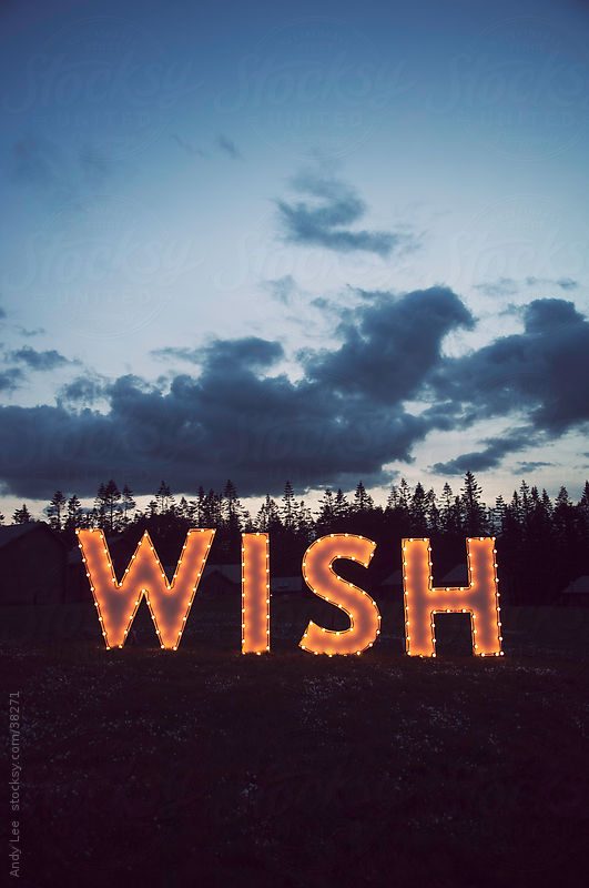 What do you wish for? by Andy Lee