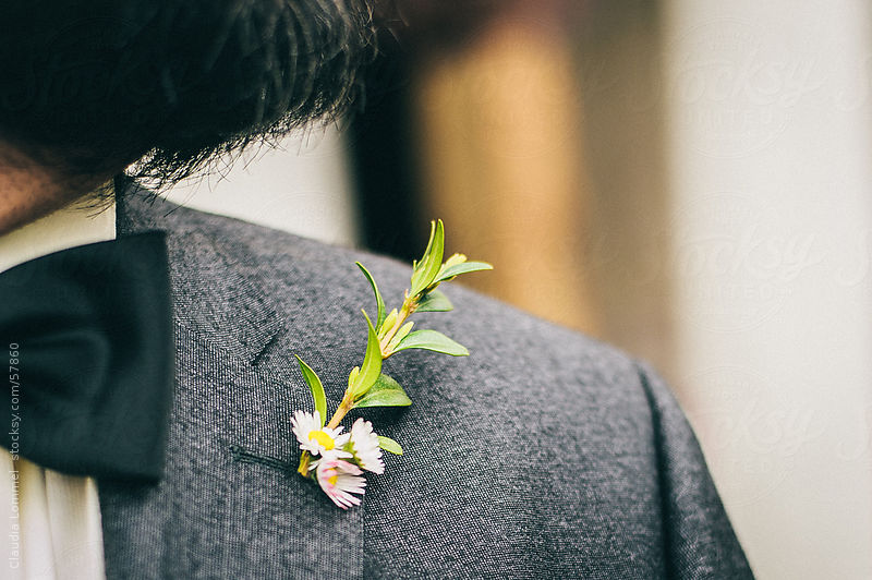 Daisy Flowers in his Buttonhole by Claudia Lommel