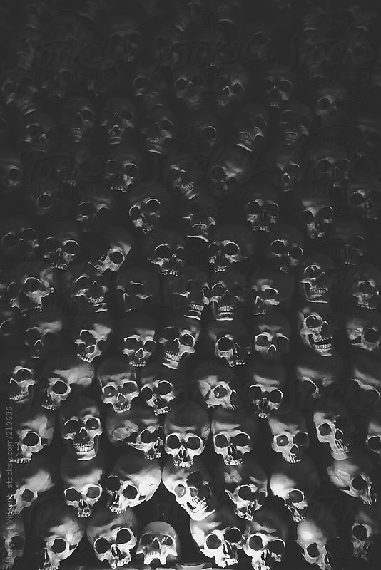 wall of skulls by Margaret Vincent