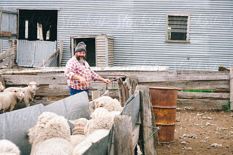Australian Sheep Farmer with his Sheep by Gary Radler Photography