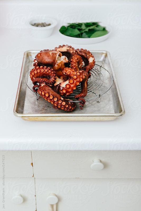 Cooked octopus on drying rack by Jen Grantham