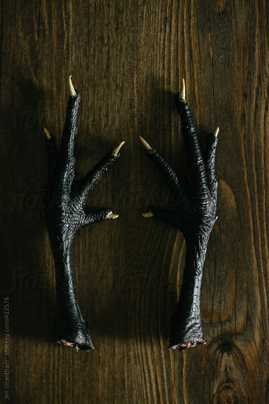Gold nail polish painted onto black chicken feet by Jen Grantham