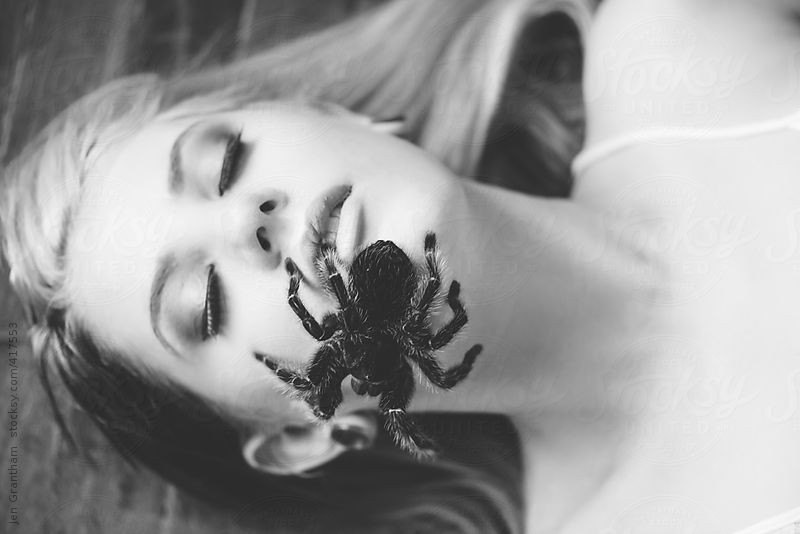 Tarantula crawling on woman's face by Jen Grantham