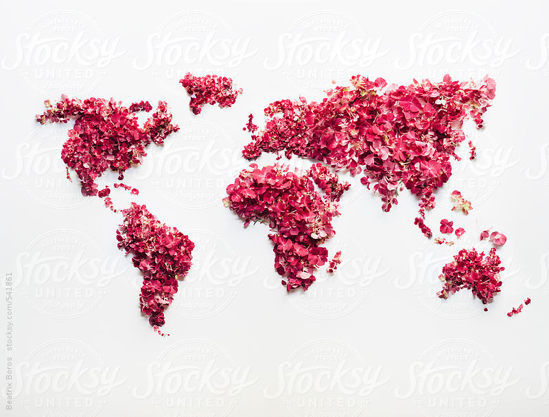 Clearly visible continents on a handmade world map made of pinkish flowers and petals by Beatrix Boros